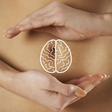 intestino e sistema immunitario