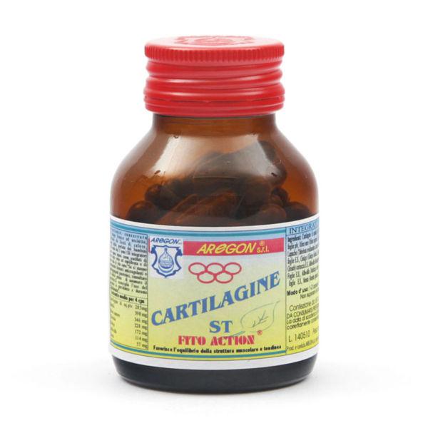 cartilagine